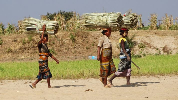 Transport malgache