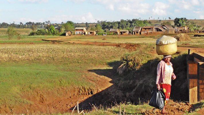 Village district